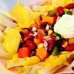Chili Cheeze Fries Premium PD Recipe