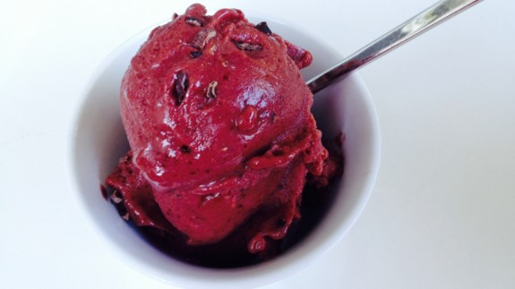 Cherry Chocolate Chip Ice Cream - © ProtectiveDiet.com