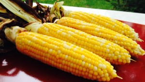 Grilled Corn - © ProtectiveDiet.com
