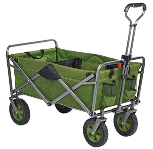 ProtectiveDiet.com Recommendation: Folding Wagon