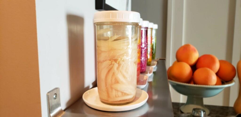 Probiotic Pickled Onions Premium PD Recipe