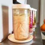 Probiotic Pickled Onions Premium PD Recipe