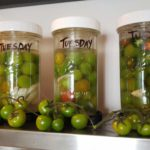 Fermented Cherry Tomatoes Premium PD Recipe