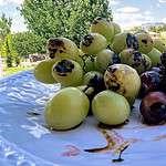 Roasted Grapes Premium PD Recipe